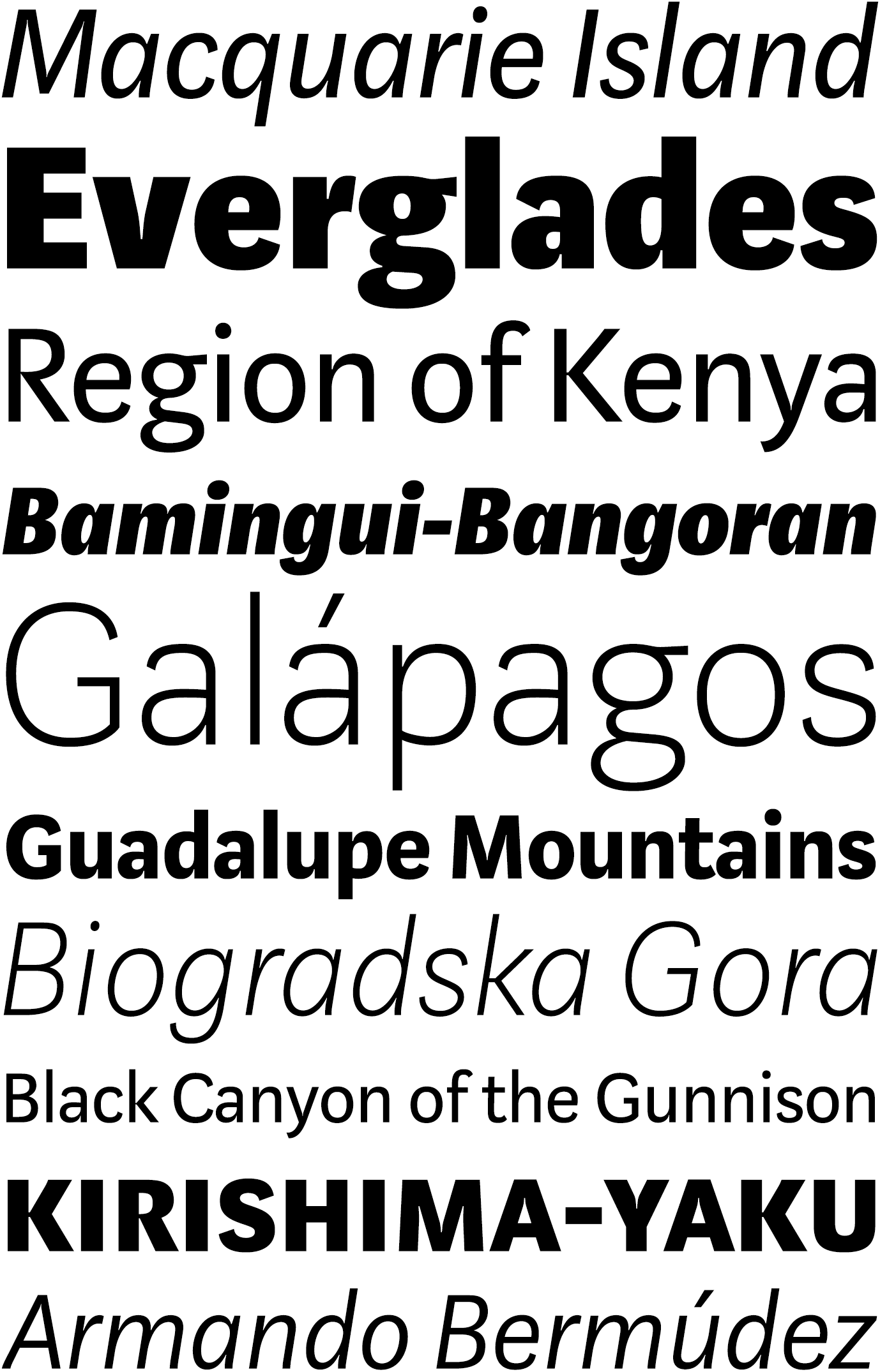Marat Sans Overview   LudwigType